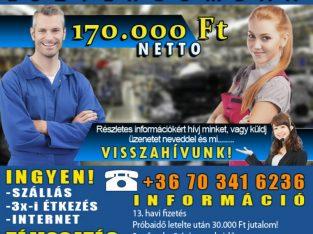 betanított munka Esztergomban